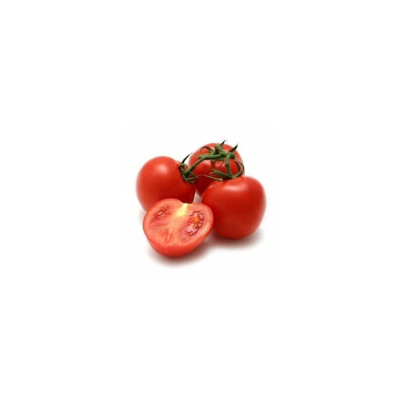 Tomato Shirley F1 5 seeds