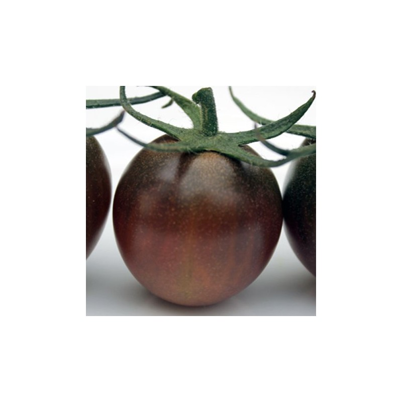 Tomato Black Cherry 100 seeds