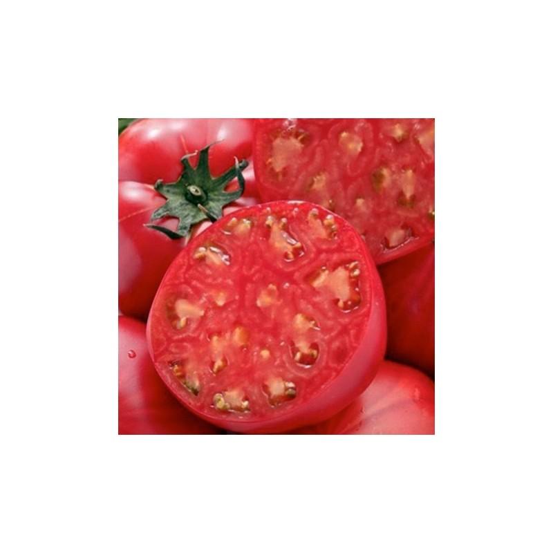 Tomato Raspberry Oxheart 100 seeds
