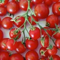 Tomato Red Alert 50 seeds
