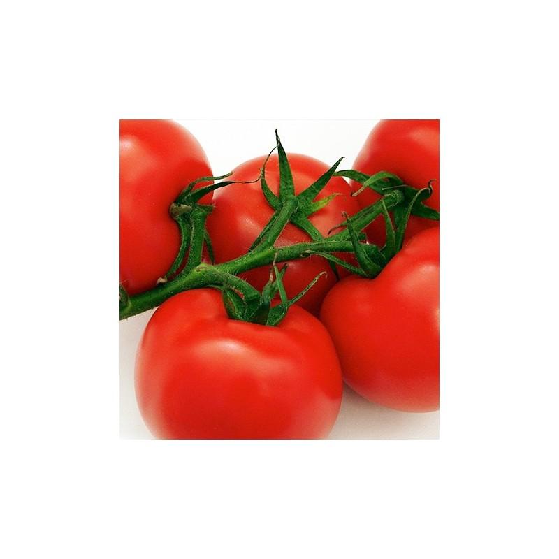 Tomato Sub Arctic Plenty 50 seeds
