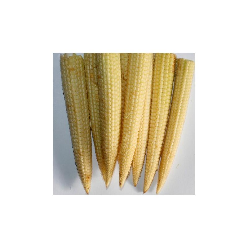Sweetcorn Minipop F1 Hybrid 30 seeds