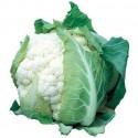 Cauliflower Candid Charm F1 30 seeds