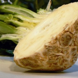 Celeriac Giant Prague 1500 seeds