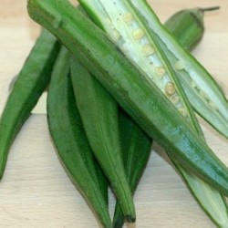 Okra Clemson Spineless 50 seeds