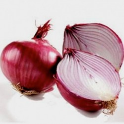 Onion Red Brunswick 300 seeds