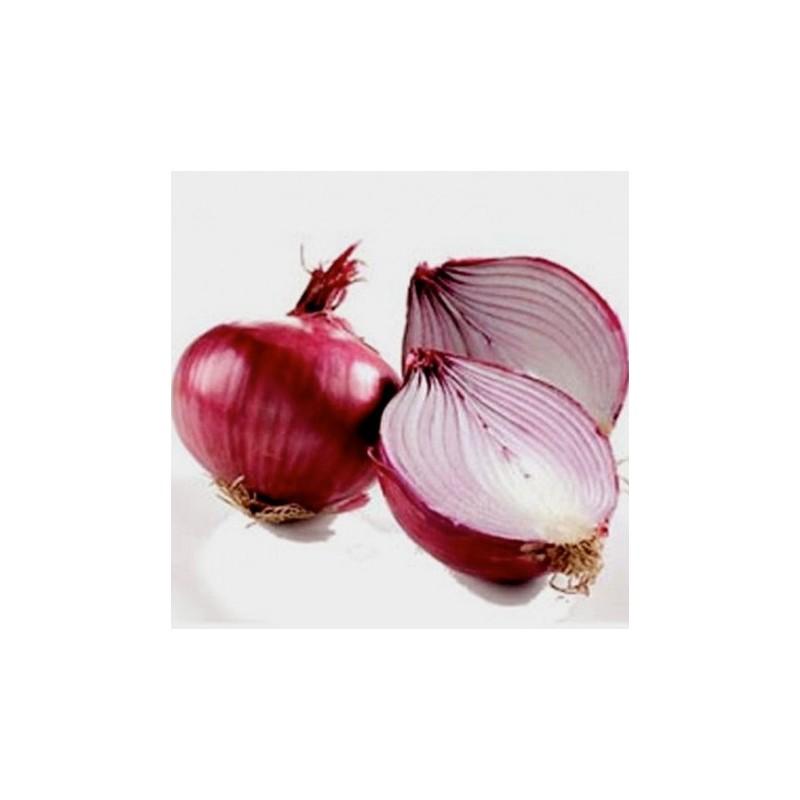 Onion Red Brunswick 300 seeds