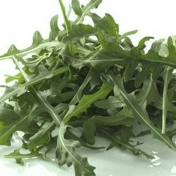 Rocket - Cultivated 1500 seeds