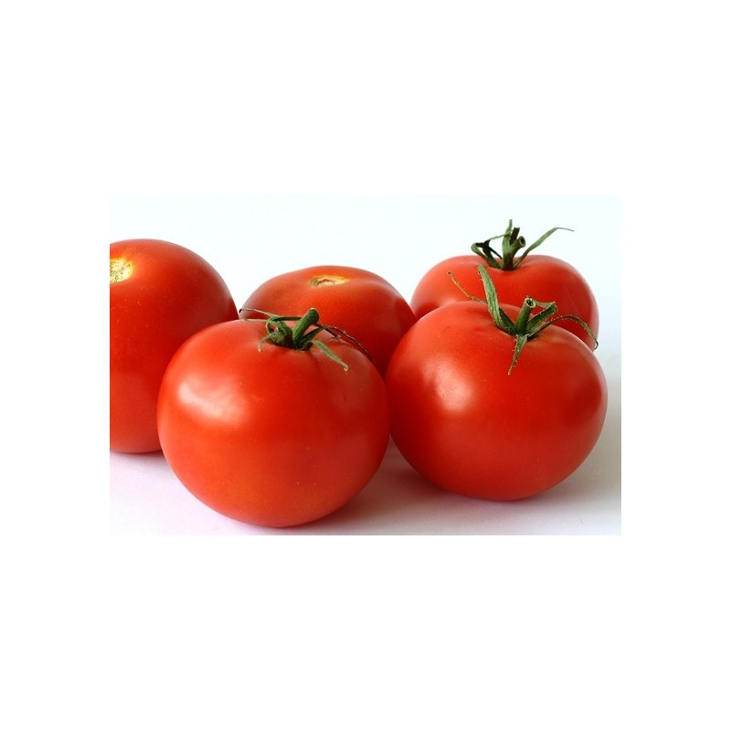 Tomato Ace 100 seeds