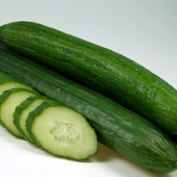 Cucumber Burpless Tasty Green F1 Hybrid 15 seeds