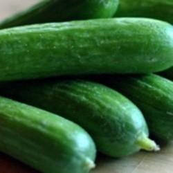 Cucumber La Diva