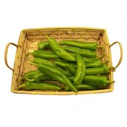 Hot Pepper - Anaheim 50 seeds
