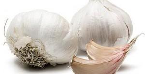 how to make liquid garlic spray