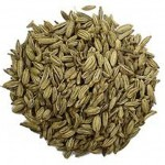 01 fennel seed
