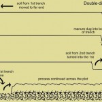 Double Digging – how to do it..