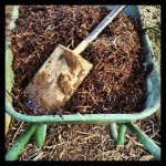 Woodchips for the paths.