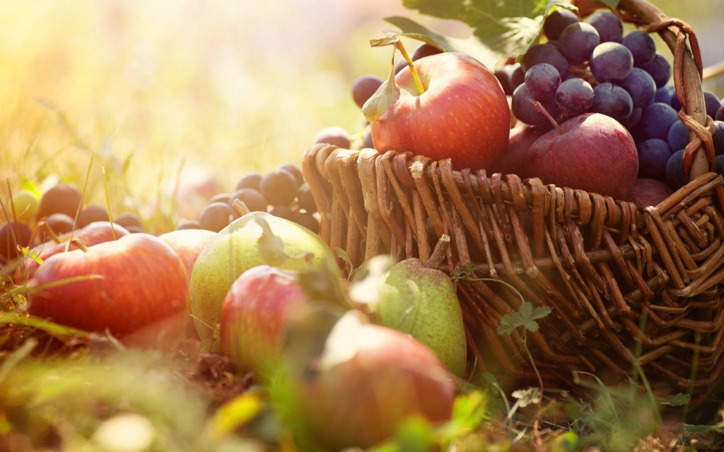 810506-free-harvest-wallpaper